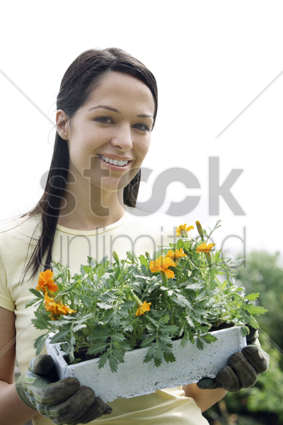 woman with gardening gloves holding a pot flowers stock photo