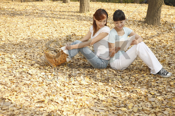 women reading book together stock photo