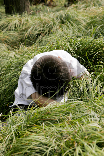 young boy searching under the bushes stock photo