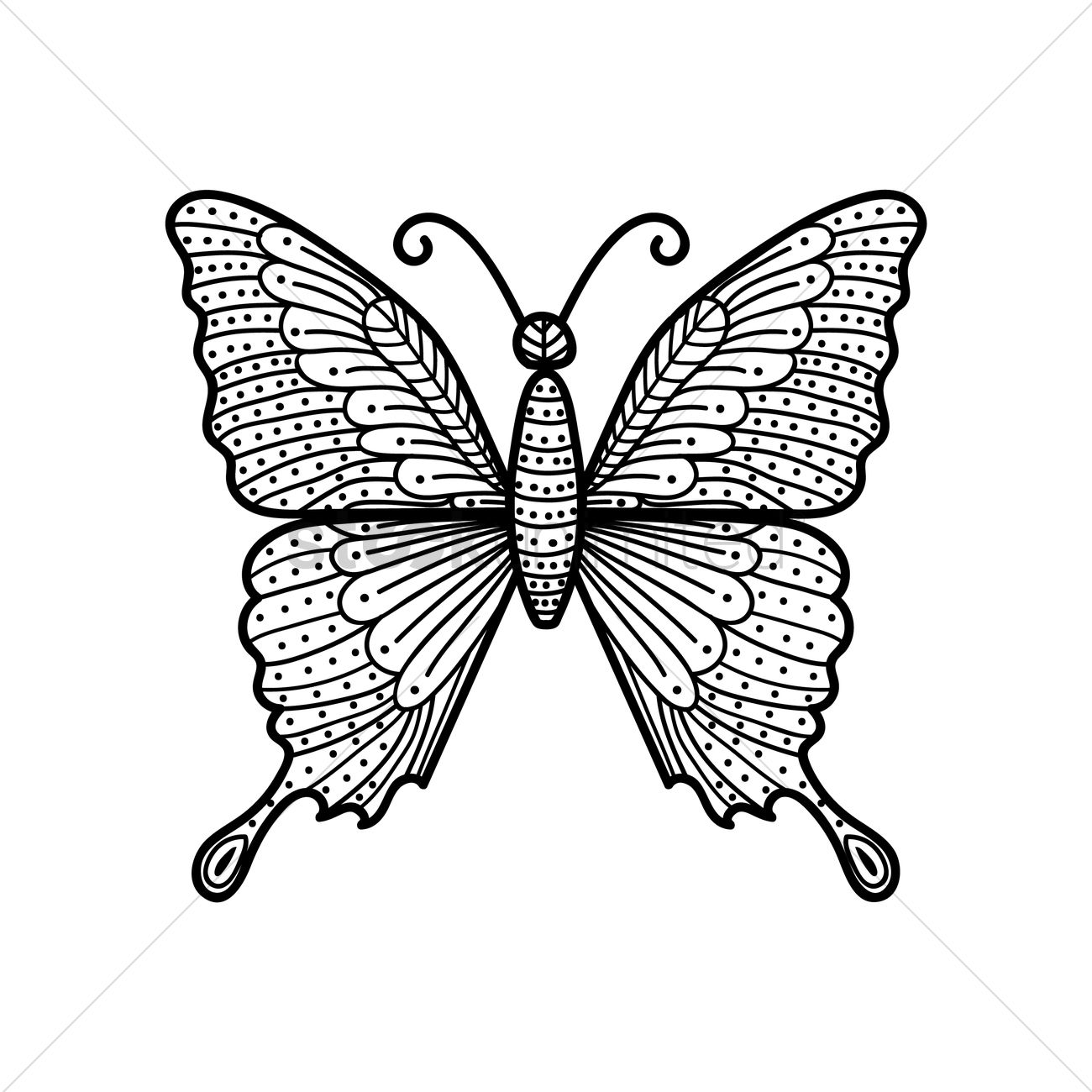Butterfly Monochrome Design Vector Image 1544039