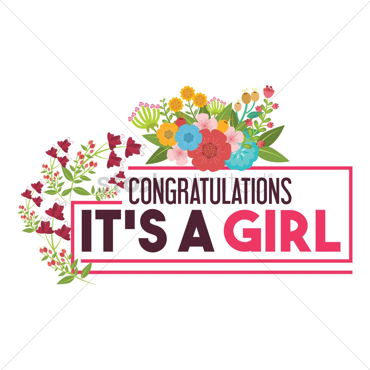 Congratulations its a girl Vector Image - 1797299 ...