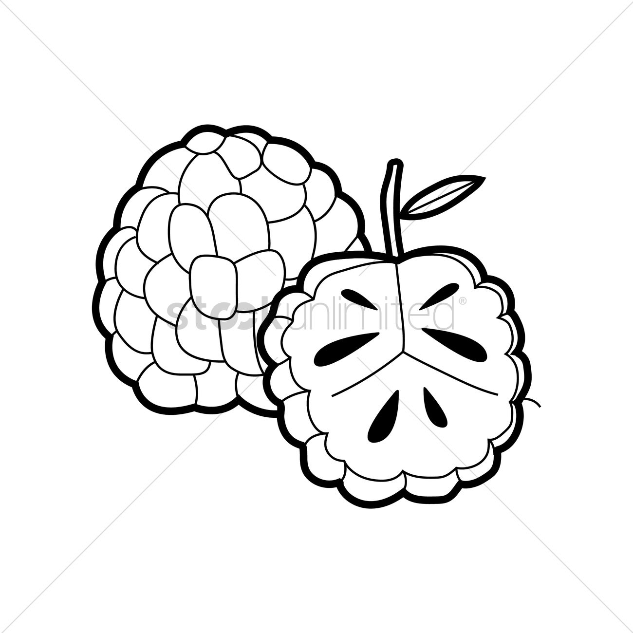 Custard Apple Coloring Pages : Atis clip art imgkid the image kid has it
