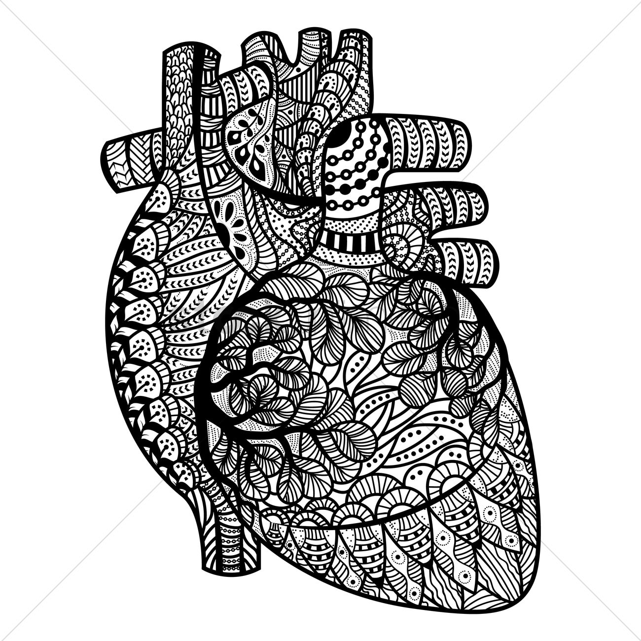 human heart coloring pages - intricate human heart design vector image 1570140